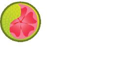 Guava Handmade Soap Logo